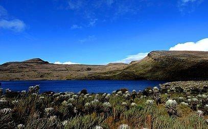 Colombia Highlands Birding-4608_3456_s_4_8
