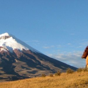 Best of Ecuador