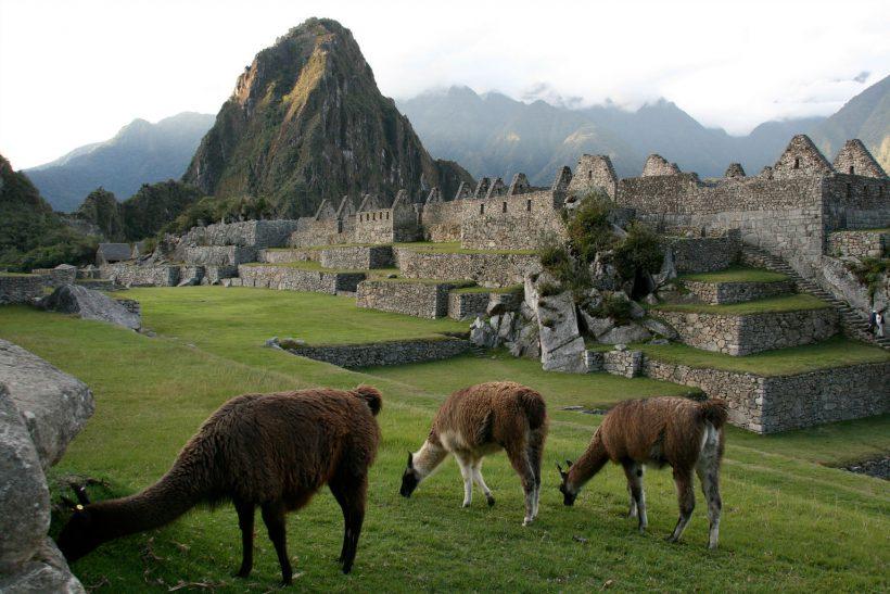 Machu Picchu Yamas